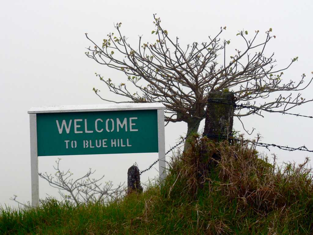 Welcome to Blue Hill [Saint Helena Island Info:Blue Hill]