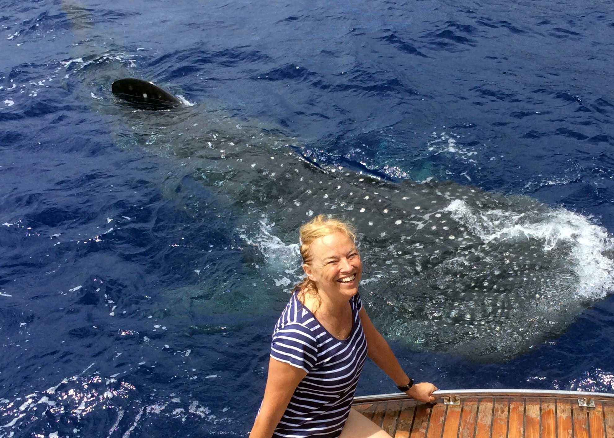 Governor Lisa Phillips with a whale shark 2017 Saint Helena Island Info Seven Wonders of St Helena