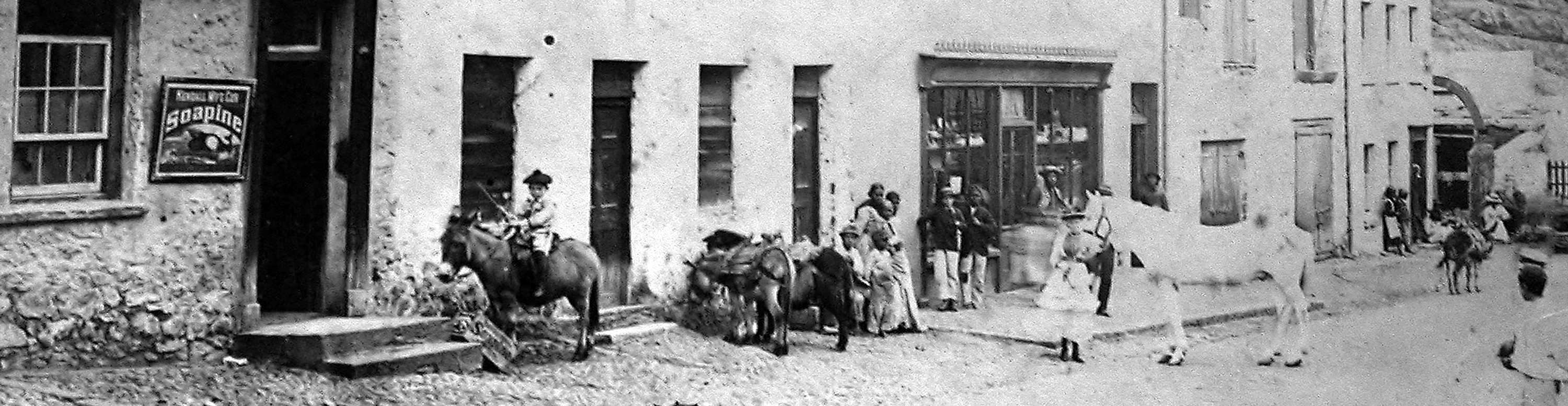 Donkeys in Market Street, Jamestown, c.1900 (and a horse!)