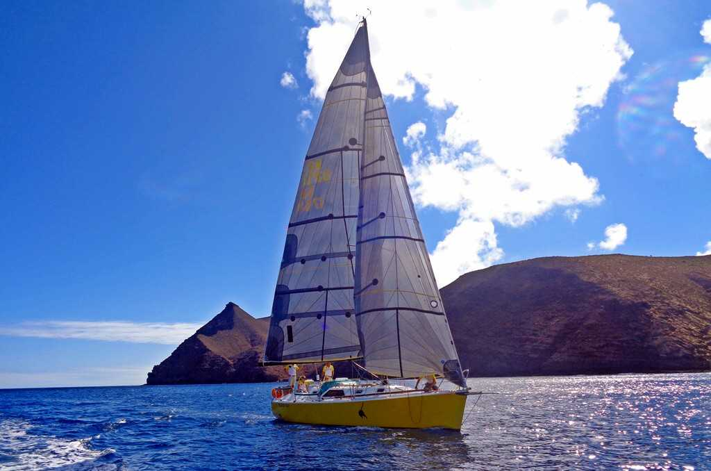 Black Cat, winner 2014 [Saint Helena Island Info:The Governor's Cup]