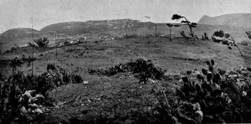 Half Tree Hollow from High Knoll Fort in 1905 Saint Helena Island Info