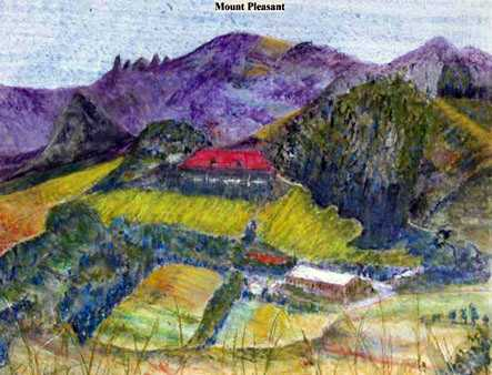 Iris Linsi Mount Pleasant Saint Helena Island Info Artists