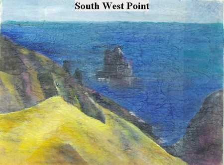 Iris Linsi South West Point Saint Helena Island Info Artists