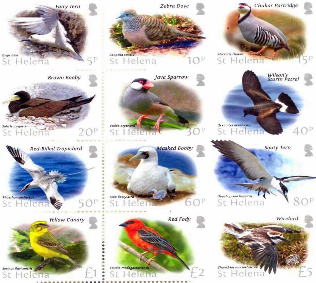 Postage stamps, 2017: St Helena birds