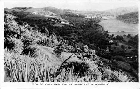 Central island view, prob. early 20th C; the open space is Francis Plain