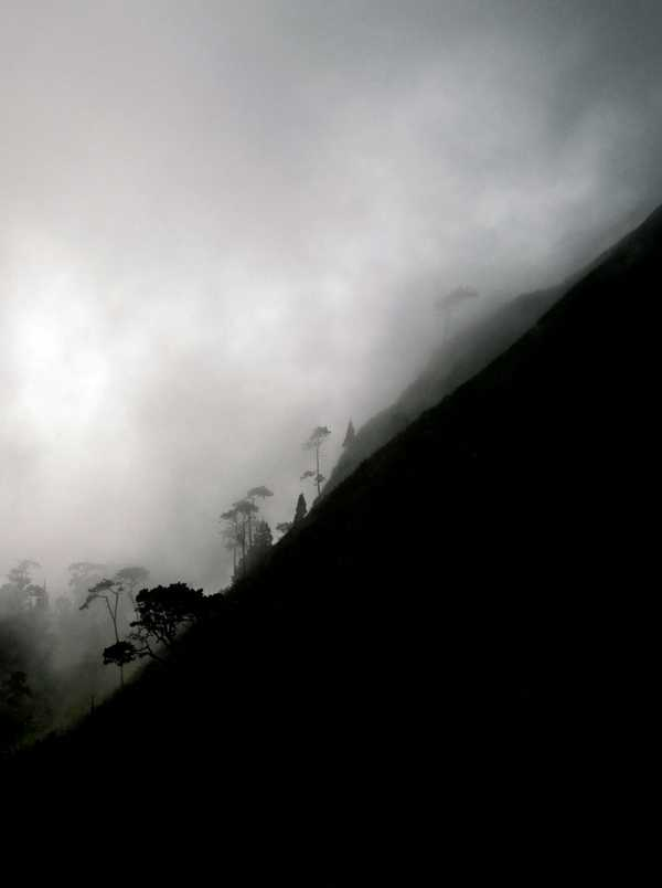 Mount Pleasant and the cloud forest [Saint Helena Island Info:Slaves and slavery]