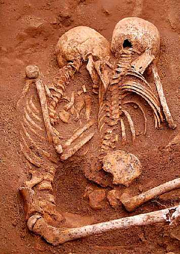Skeletons buried in the slave graves [Saint Helena Island Info:Slaves and slavery]