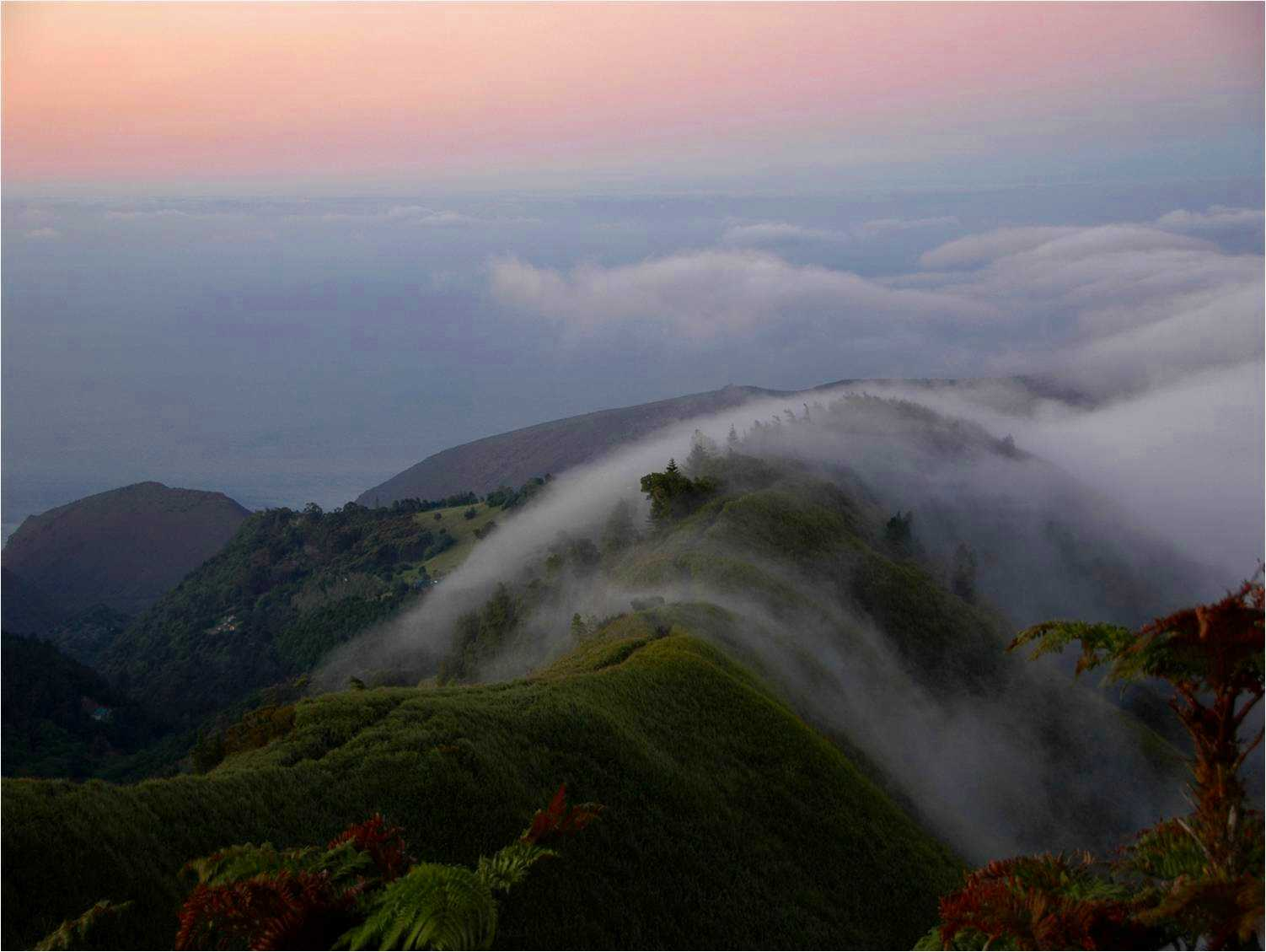 The Peaks in the mist Saint Helena Island Info Island Nature