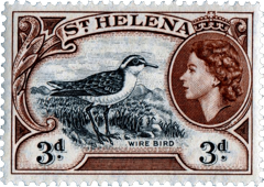 Wirebird stamp
