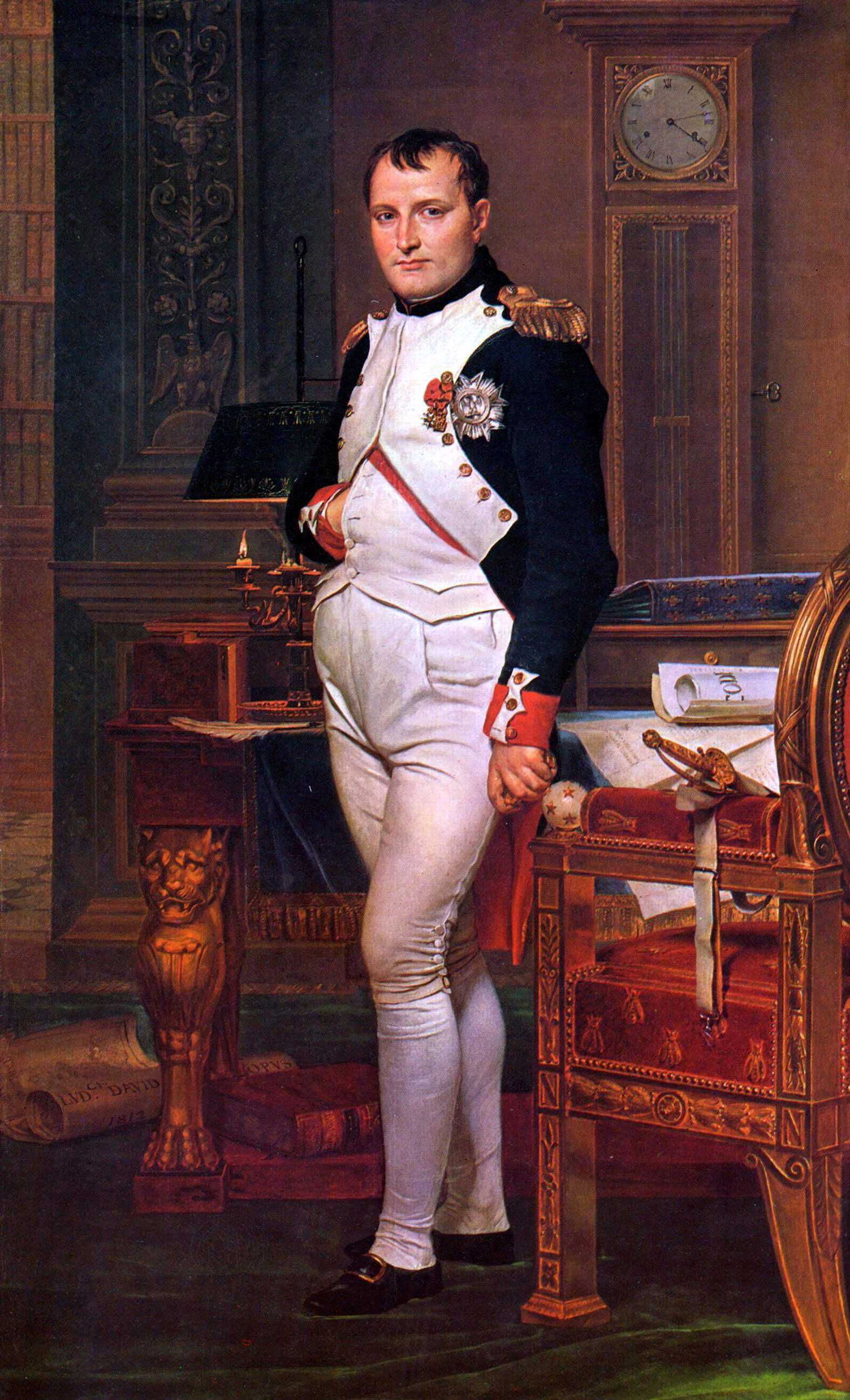 Napoleon Bonaparte, by Jacques-Louis David (1812)